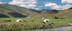 Mongolia nomas