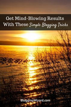How To Get Mind-Blowing Results From Every Blog Post You Publish: http://www.bloggingwizard.com/blogging-tips/