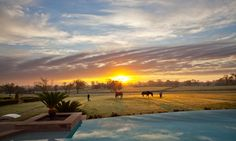Awoke to a breathtaking #sunrise this morning. #TLPicks #TLTtransportMe #luxuryresort #texas #TravelTuesday Nothing but happy thoughts on #ElectionDay