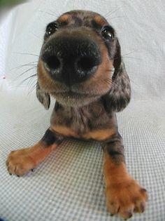 nose!!!