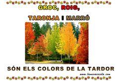 TARDOR Pre School, Valencia, Accounting, Seasons, Day, Natural, Carnival, School, Infant Activities
