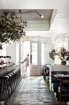 Fox Fodder: Calling all Restaurants... And Shops. And Homes.