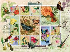 This jigsaw puzzle has some beautiful illustrations of hummingbirds and butterflies.