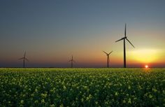 Green Energy Commodities / Introducing Renewable Energy Certificates to the UK