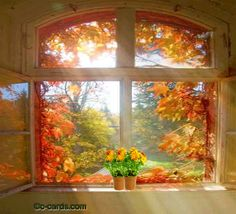 Hi just checking in to see how you are doing... animated autumn window leaves fall gif squirrel fall greeting autumn greeting