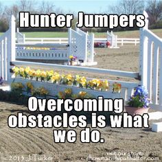 Hunter jumpers www.showmanshipathalter.com