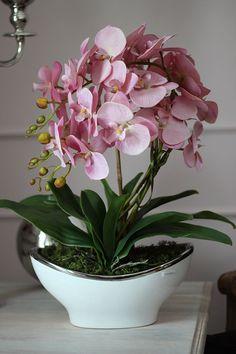Design flower pot houseplant 23 ideas for 2019 Orchids Garden, Orchid Plants, Exotic Flowers, Amazing Flowers, Orchid Flower Arrangements, Artificial Orchids, Indoor Orchids, Growing Orchids, Phalaenopsis Orchid