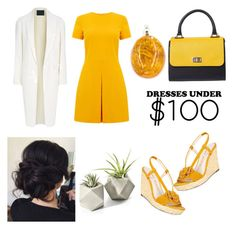 """""""100"""" by cicilia-howell ❤ liked on Polyvore featuring Warehouse, Alexander Wang and Anne Klein"""