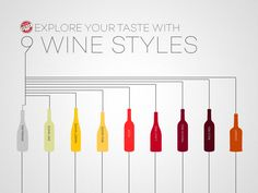 Want a specific type of wine, but don't know how to ask for it? Learn how wine can be classified into 9 main wine styles