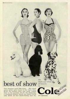 Poodles & Dalmatian Cole of California Swimwear (1956) - It's Always Important To Match Your Suit To Your Dog! ;)