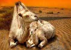 Mama and me -