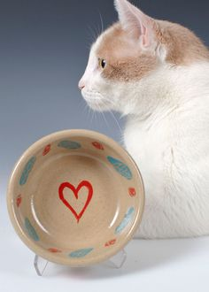 Hey, I found this really awesome Etsy listing at https://www.etsy.com/listing/200343714/cat-or-dog-feeding-dish-with-hearts