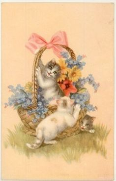 Cats and flower basket