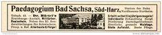 Original-Werbung/ Anzeige 1914 - PAEDAGOGIUM BAD SACHSA - ca. 115 x 20 mm
