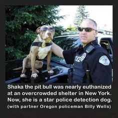 God bless this guy!! For once a good story about a pit bull being rescued.