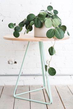 Green Indoor plants Tropical Boho Bohemian Relax Nature  Hippy  Bold Paint Styling Interior Design Home  Botanical #InteriorDesignPlants