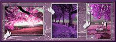 Purple Fall Facebook Cover