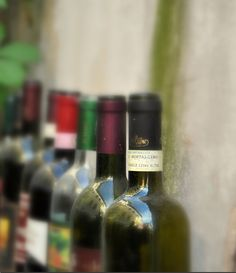 29 New Non-GMO Verified Wines to Love  http://www.organicauthority.com/29-new-non-gmo-verified-wines-to-love/