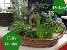 Magical Fairy Gardens Taking Over Desks Globally www.teeliesfairygarden.com . . . The trend of fairy gardening is sweeping the globe. In fact, they're so popular right now that they even made it onto Pinterest's list of the top 100 emerging trends for 2017. The Trend has now made it to the office, businesses, home offices and even teachers desks.  #fairygarden