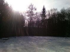 Hallo zusammen, und schon wieder eine Monatscollage… der Januar, kalt, frostig, windig, mit etwas Schnee (für Rheinhessen schon eine Seltenheit)… Kommt gut in den Februar. Bis bald eure…