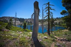Tahoe National Forest, San Juan Ridge, Lake Basin Sierra Buttes