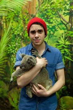 Taylor with a koala; okay, is holding a koala some sort of rite of passage for band members or something? xD
