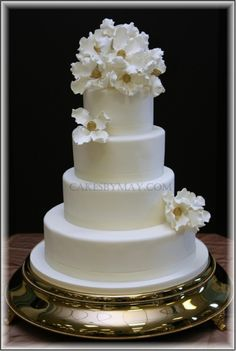 Simple Elegance  on Cake Central