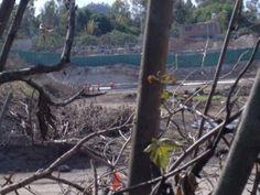 En el pueblo de Santiago Tepalcatlalpan, en la sureña Delegación Xochimilco, una construcción en un terreno de más de 30 mil metros cuadrados ha puesto en alerta a algunos vecinos, quienes sospechan que se trataría de la edificación de una plaza comercial con un supermercado de la cadena Walmart. El problema es que el […]