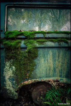 Båstnäs car graveyard, via Flickr.