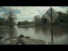 Author Blaine Lourd was 'Born on the Bayou' - YouTube