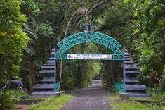 """Taman Nasional Alas Purwo adalah taman nasional yang terletak di Kecamatan Tegaldlimo dan Kecamatan Purwoharjo, Kabupaten Banyuwangi, Jawa Timur, Indonesia. Secara geografis terletak di ujung tenggara Pulau Jawa wilayah pantai selatan antara 8°26'45""""–8°47'00"""" LS dan 114°20'16""""–114°36'00"""" BT National Parks, Flora, Outdoor Structures, Travel, Image, Wings, Tourism, Viajes, Plants"""