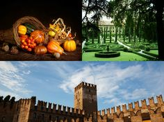 """e.e. Cummings: """"I thank you… for the leaping greenly spirits of trees, and for the blue dream of sky"""" #Thanksgiving #ringraziamento #Verona"""