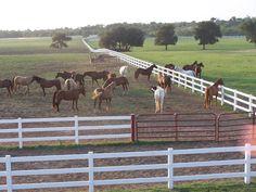 PRACHTIG PROPERTIES.COM® - prestige, Luxury Homes DFW, Sells World Class Properties boerderij, Ultimate Luxury Real Estate For Sale ... Prachtig Properties For Sale! - BROWNWOOD EARLY TEXAS BROWN COUNTY NORTH Texas Hill Country HORSE RANCH BESCHIKBAAR VOOR AANKOOP VOOR VERKOOP - De Sorrel Canyon Horse Ranch is beschikbaar voor aankoop! Een van de mooiste boerderijen Texas 'is beschikbaar voor aankoop, eigenaar verkoper financiering beschikbaar.