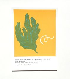 Image of Local Color: Plant Dyes of the Columbia River Gorge