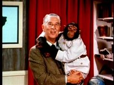 """Original Mutual of Omaha's Wild Kingdom with Marlin Perkins. """"While Jim (Fowler) is busy running from the angry mother rhino let me tell you why you should think about getting more insurance...."""" :)"""