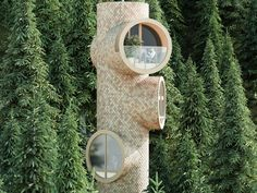 These treehouse tiny homes were inspired by Sesame Street and Minions and designed to combat 'lazy and boring' architecture - see inside Sustainable Architecture, Architecture Design, Woodland House, Composting Toilet, Unique Buildings, Land Of Enchantment, International Style, Dark Interiors, Water Treatment