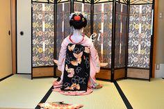 Maiko Toshiemi 舞妓とし恵美 春雨の壱 : ちょっとそこまで