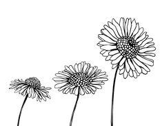Dibujo de Ramo de gardenias para Colorear  Dibujos de Flores para