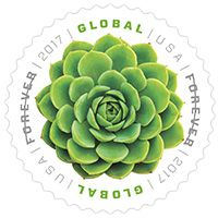 Forever Stamp I need to get this one!! Global: Green Succulent