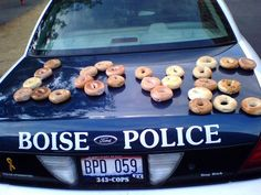 These look like bagels to me.