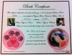 A dog birth certificate bordered in bones and featuring a happy ...