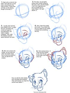 How to Draw Felines: Head by JustAutumn Lion Drawing, Lion King Drawings, Furry Drawing, Disney Drawings, Cartoon Drawings, Disney Style Drawing, Animal Drawings, Cool Drawings, Drawing Animals
