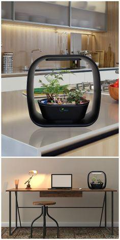 Spigo LED smart light garden. Indoor garden, Anywhere, Any Season, Anytime! #affiliate