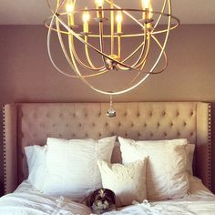 @kristenhomsombath's dog Bella takes over our Roberto Bed! Also features our Eclipse Chandelier.