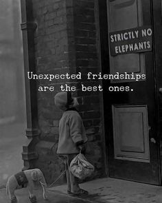Friendship quotes - Unexpected Friendships are the Best Ones Best Quotes Unexpected Friendship Quotes, Unexpected Quotes, True Friendship Quotes, Bff Quotes, Happy Quotes, True Quotes, Funny Quotes, Qoutes, Lost Friendship