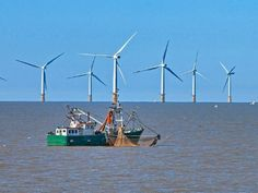 Beothuk Energy partners with Copenhagen investors for Atlantic off-shore wind farm - Cantech Letter Farm Projects, Newfoundland, Investors, Copenhagen, Wind Turbine, Denmark, Environment, Management, Articles