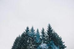 Andreea Izdrea Photography Photography, Outdoor, Outdoors, Photograph, Fotografie, Photoshoot, Outdoor Games, The Great Outdoors, Fotografia