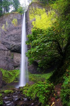 ✮ Latourell Falls is a stunning 249 ft. waterfall in the Columbia River Gorge in Oregon