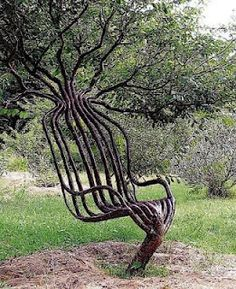 LIVING FURNITURE: the Pooktre Tree Chair...interesting...