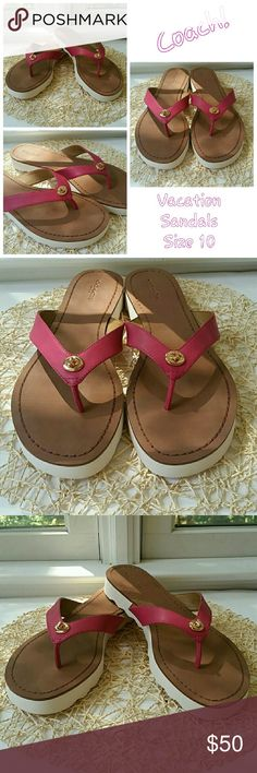 """👡Brand New Coach Hot Pink Sandals NWOT Absolutely gorgeous hot pink sandals from Coach. Hot Pink strap with gold tone lock hardware. Brown interior. White Bottom. 1"""" Heel. Super comfy, lightweight, and stylish. Excellent NWOT condition, no issues. These sandals have never been worn. Please let me know if you have any questions. Thank you for looking! Xoxoxoxo Coach Shoes Sandals"""